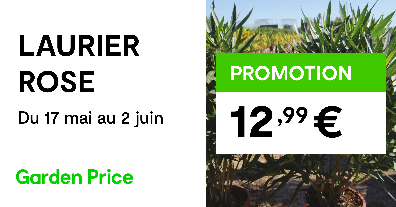 promotion garden price